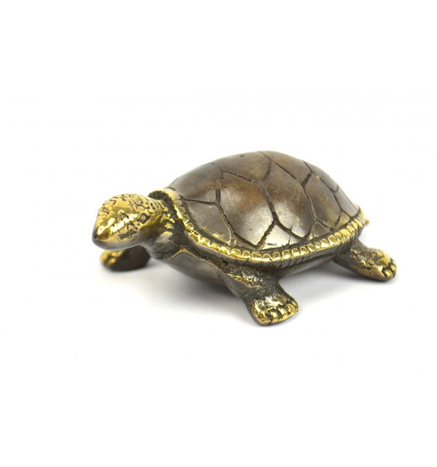 Objet tortue en decoration des id es novatrices sur la for Tortue decoration