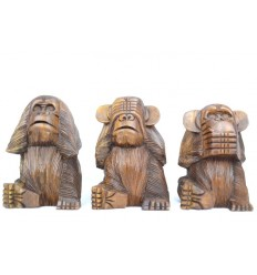 d co les 3 singes de la sagesse et leur signification coco papaya. Black Bedroom Furniture Sets. Home Design Ideas