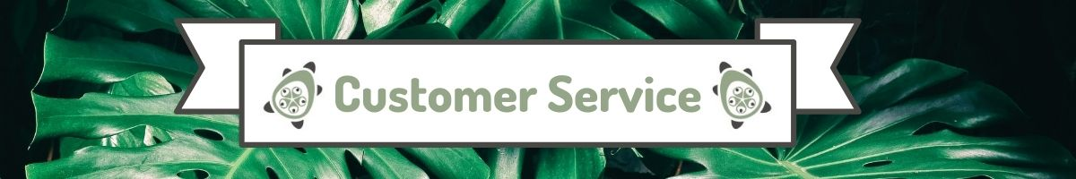 Coco Papaya Customer Service